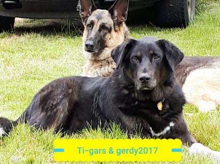 Ti-gars & Gerdy